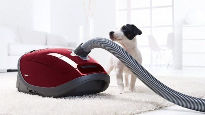 How to Disinfect a Vacuum Cleaner