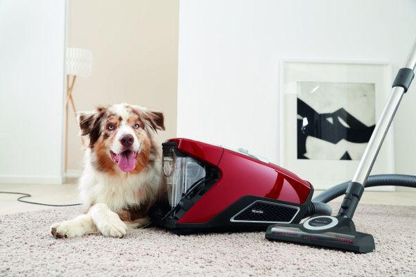 Miele cylinder vacuum cleaner