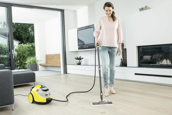 Steam Cleaner Reviews