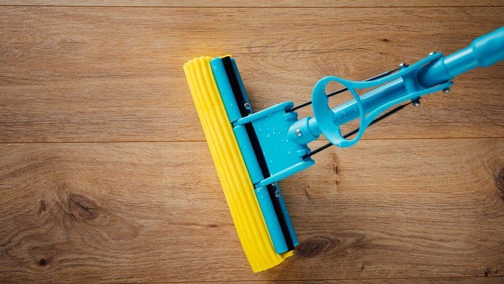 Best Squeegee Mop UK