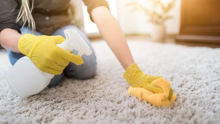 White Vinegar Clean Carpet
